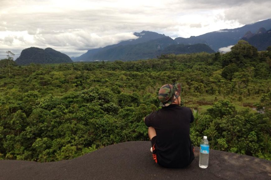 Avontuur jungle leven, het avontuur van, leven in de jungle, bizar avontuur,