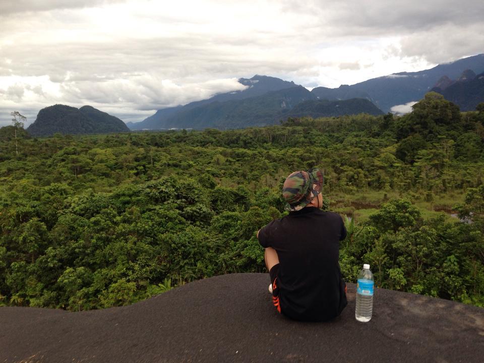 Het avontuur van | Het leven in de jungle