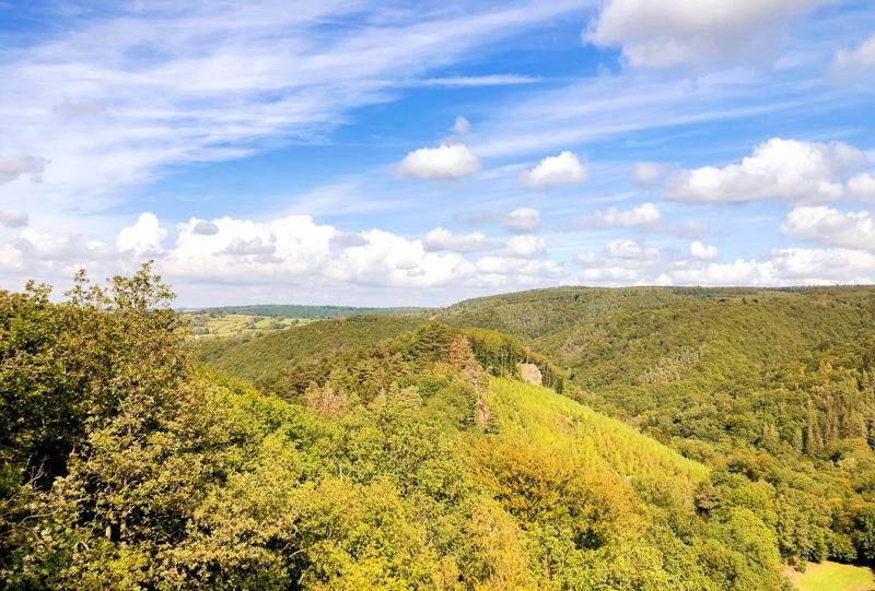 Uitzichtpunt Wandeling Ninglinspo Ardennen