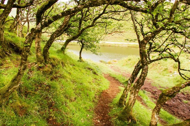 wandelen Fairy Glen