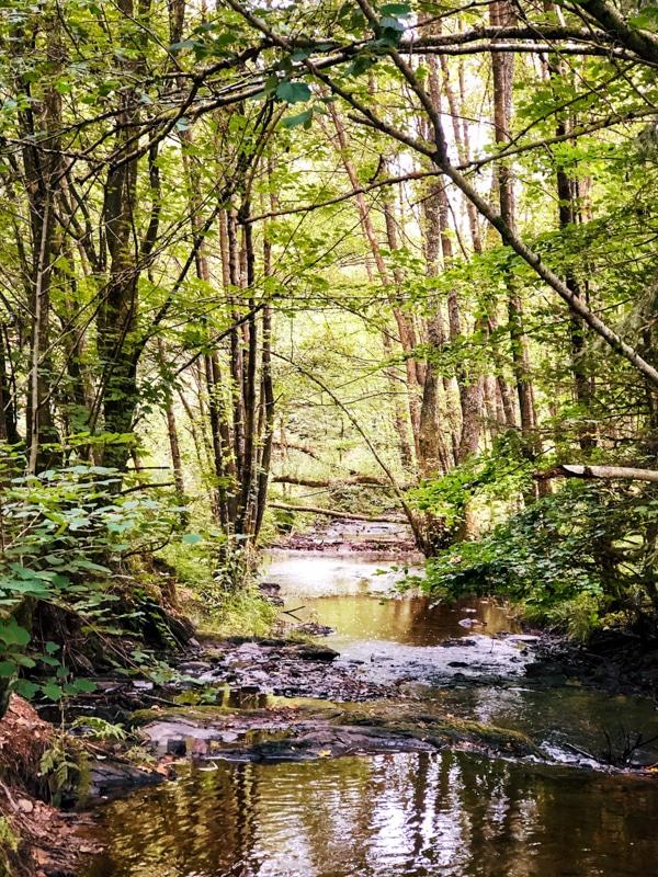 Wandelroute Feeënvallei Ardennen