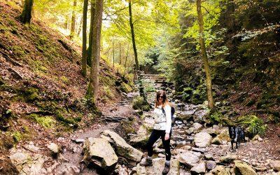 Ninglinspo – de mooiste wandeling in de Ardennen