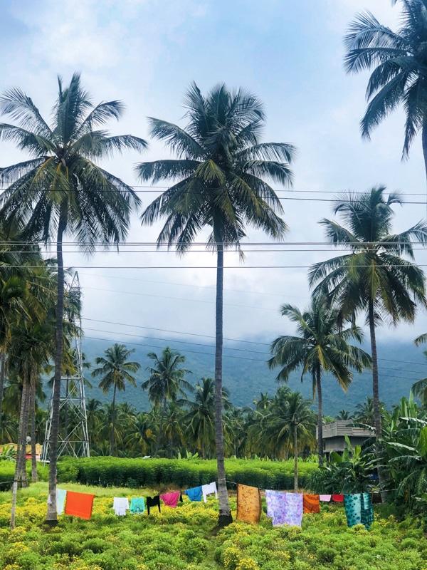 Tamil Nadu Rickshaw Challenge