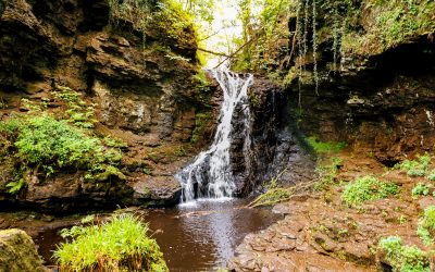 Waterval wandeling in het Northumberland Nationaal Park | Hareshaw Linn