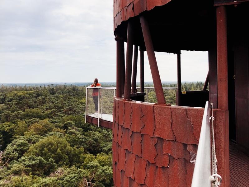 De Bosbergtoren in Appelscha beklimmen