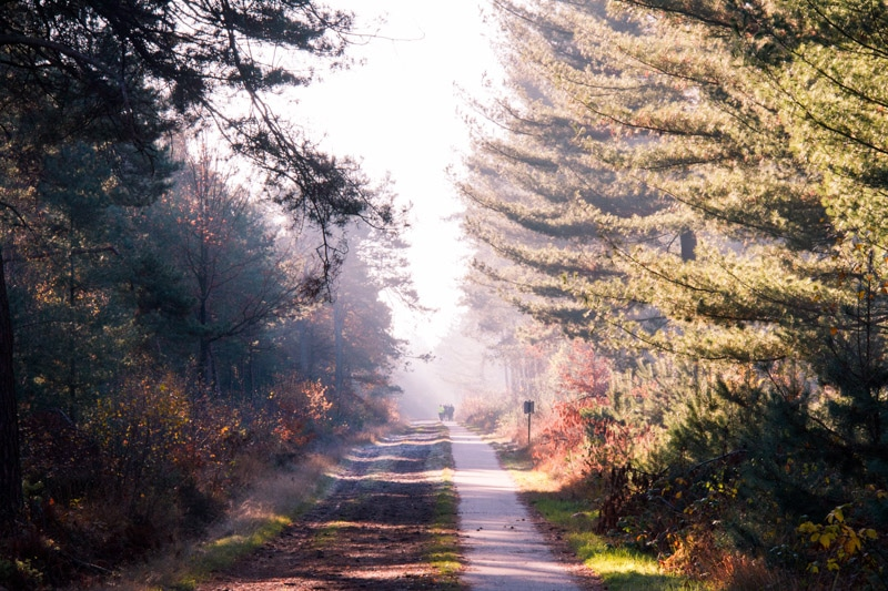 Cartierheide wandelroute