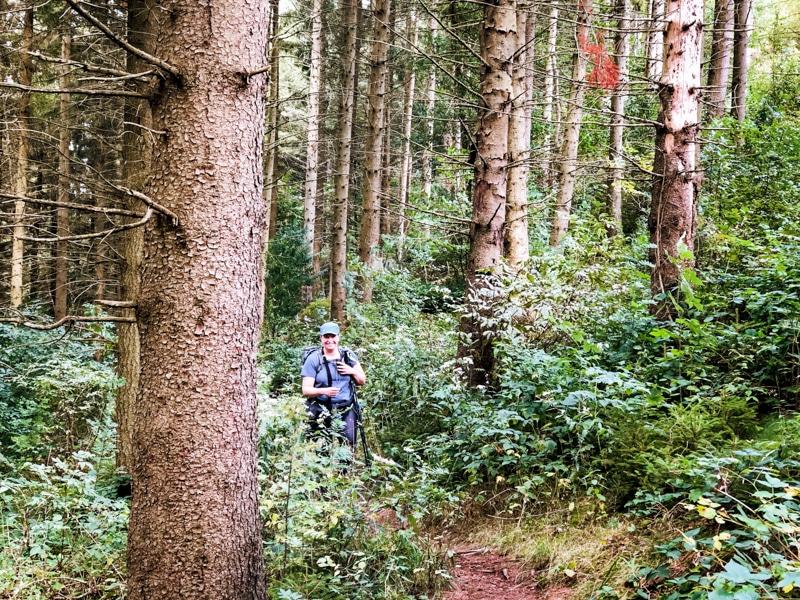 Feeënvallei wandelen Ardennen