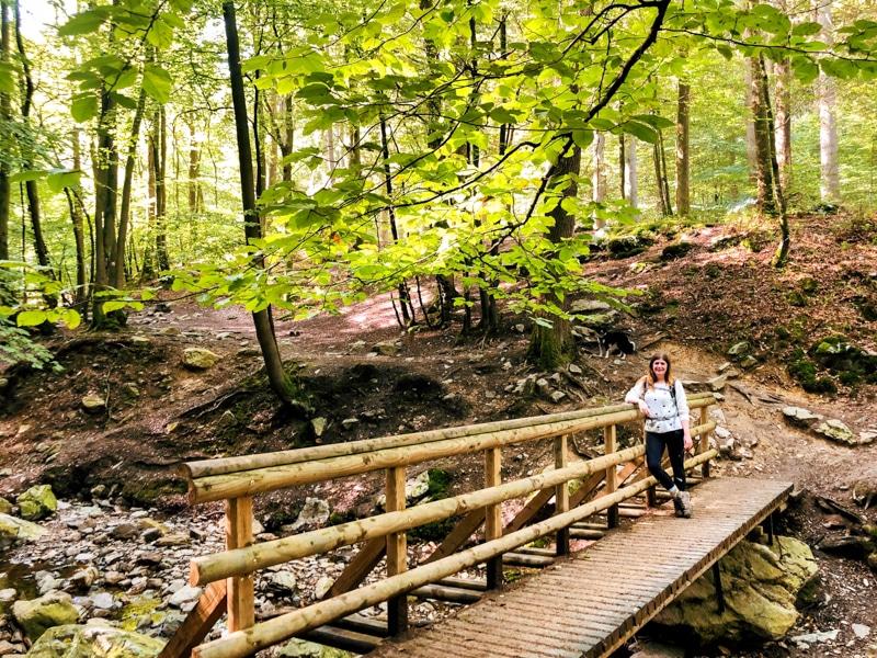 Ninglinspo wandelroute Ardennen