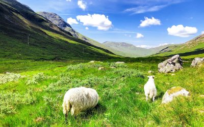 Als wat je moet weten over de West Highland Way