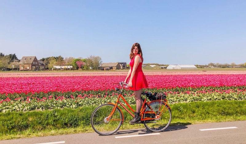 Fietsen door de tulpenvelden van nederland, fietsen door de tulpvelden, fietsen tulpenvelden, fietsen en mountainbiken, wereld fiets dag