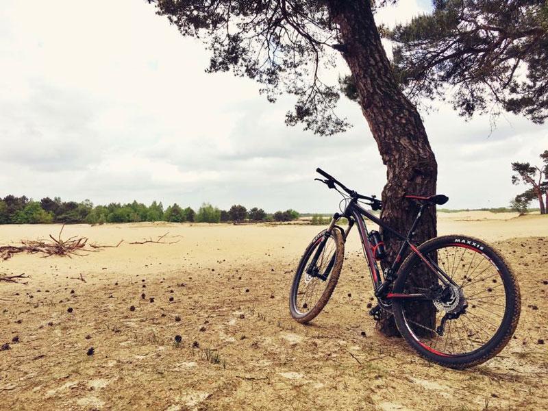 Mountainbiken Loonse en Drunense duien, fietsen en mountainbiken, wereld fiets dag