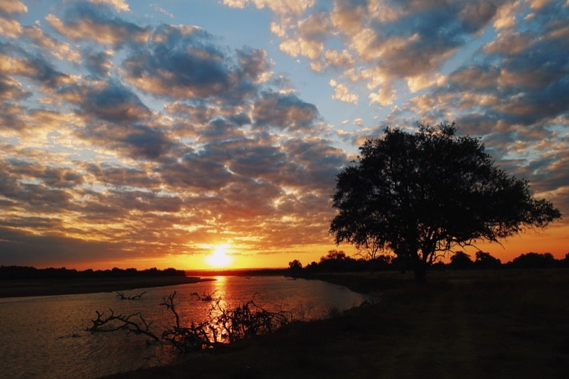 instagram top 5, instagram, populaiste foto's, zambia, south luangwa national park, national park, south luangwa, safari, zonsondergang, sunset, sunset africa, zonsondergang afrika,