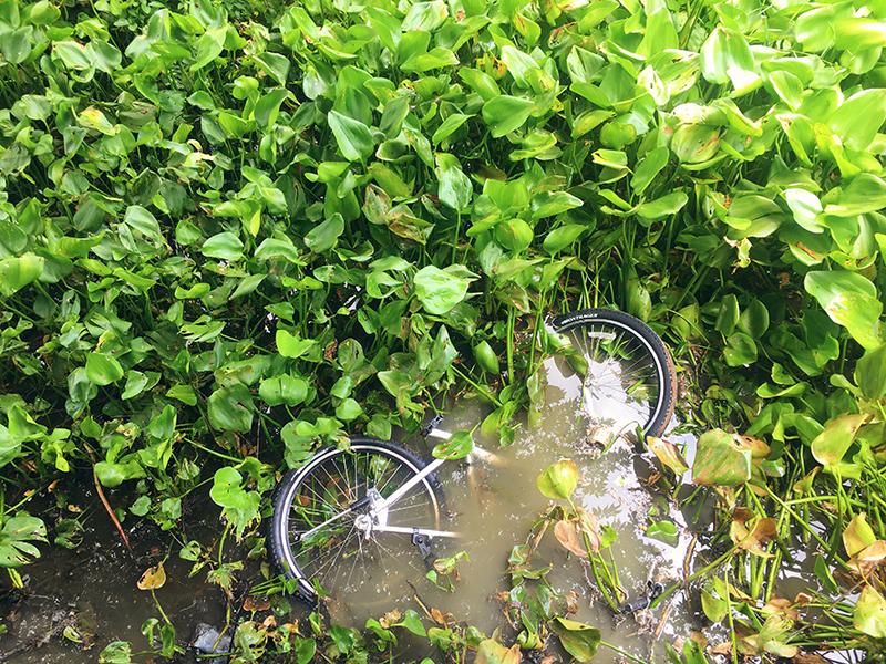 Co van Kessel, fietsen in Bangkok