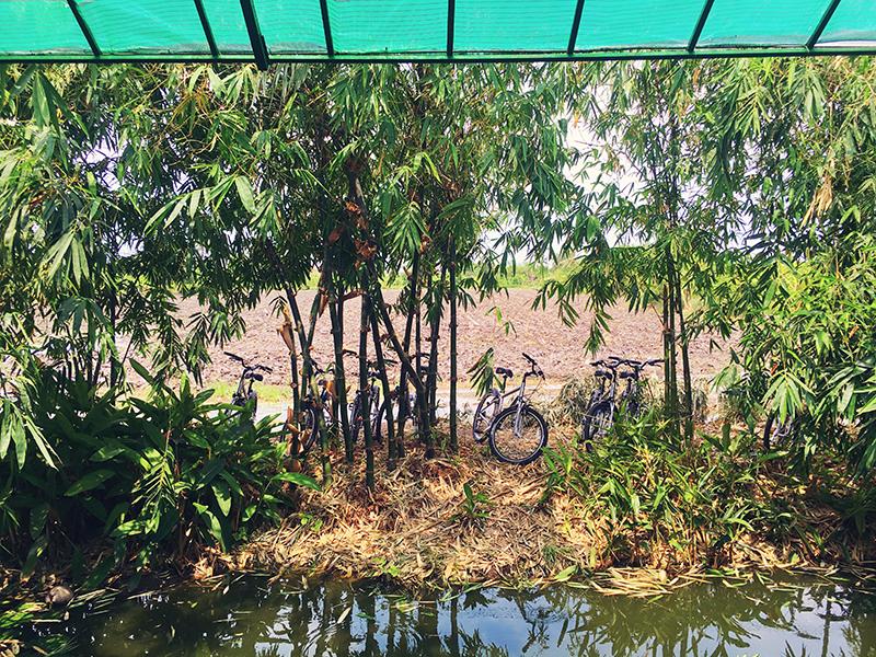 Lunch op z'n Thais, Co van Kessel, Fietsen in Bangkok