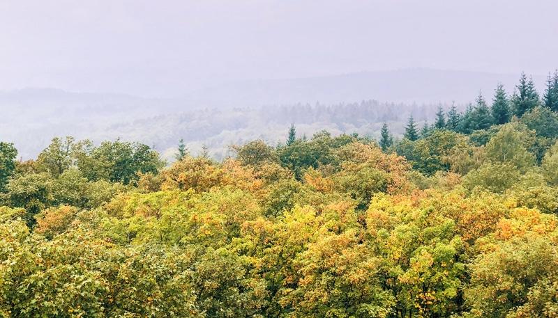 Wandeling Gerolsteiner Keltenpfad: met een uitzichtpuntentoren