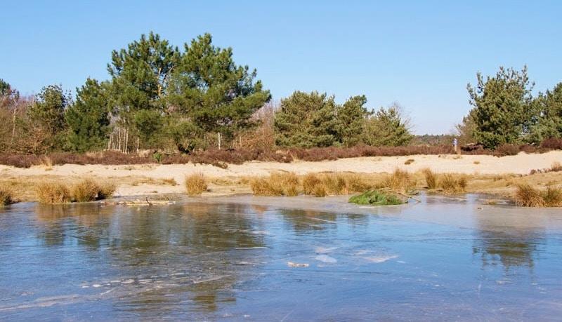 loonse en drunense duinen, national park, nationaal park, loonse en drunense duinen nationaal park, nationaal park loonse en drunense duinen, nationale parken nederland, wandelen in nederland, wandelen, wandelen noord brabant, noord brabant,