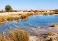 Wandelen in Nationaal Park Loonse en Drunense duinen