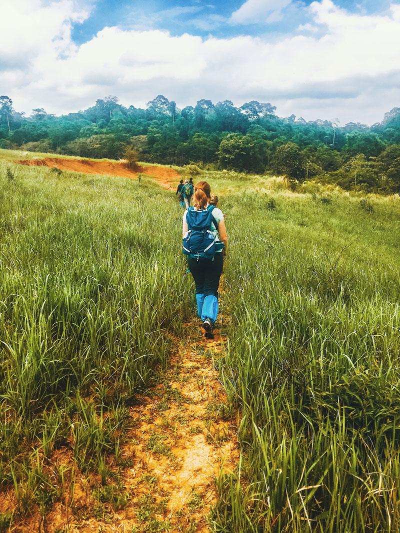 Twee daagse Jungle Tocht door Khao Yai National Park