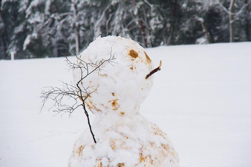 Loonse en Drunense Duinen, nationaal park, drunense duinen, winterwandeling, sneeuw, winterwandeling noord brabant, noord brabant, sneeuwval, wandelen met sneeuw, sleeen,