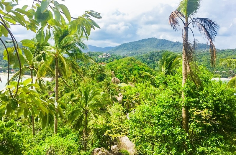 View from the the John Suwan Viewpoint on Koh Tao