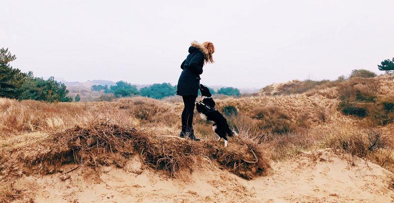 Wandelen met je hond in Nationaal Park Zuid-Kennemerland