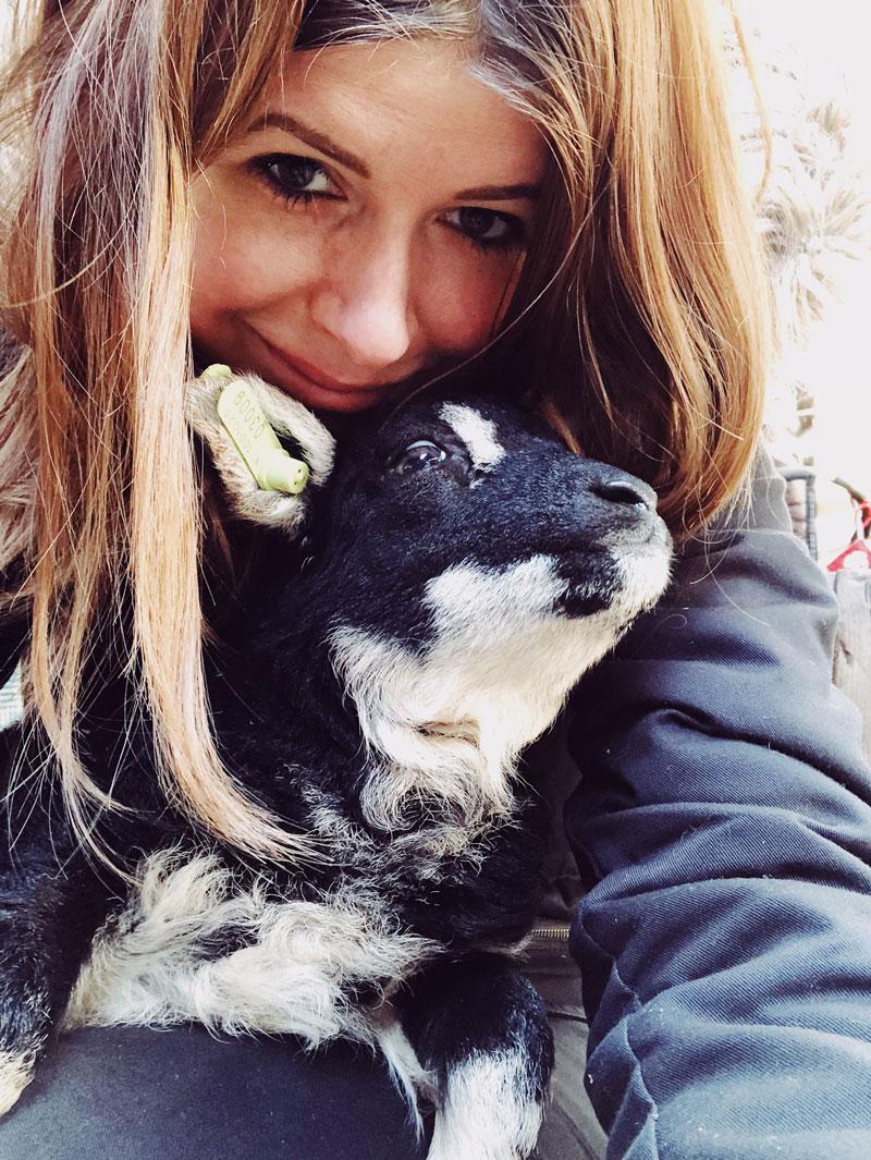 Knuffelen met een geitje op de kinderboerderij - Werelddierendag