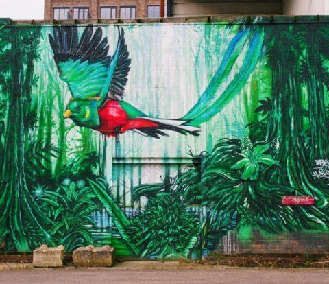 Street art eindhoven, street art, street art nederland, eindhoven, eindhoven nederland, street art route, street art route nederland, eindhoven street art, eindhoven berenkuil, eindhoven strijp s, strijp s street art, berenkuil street art,