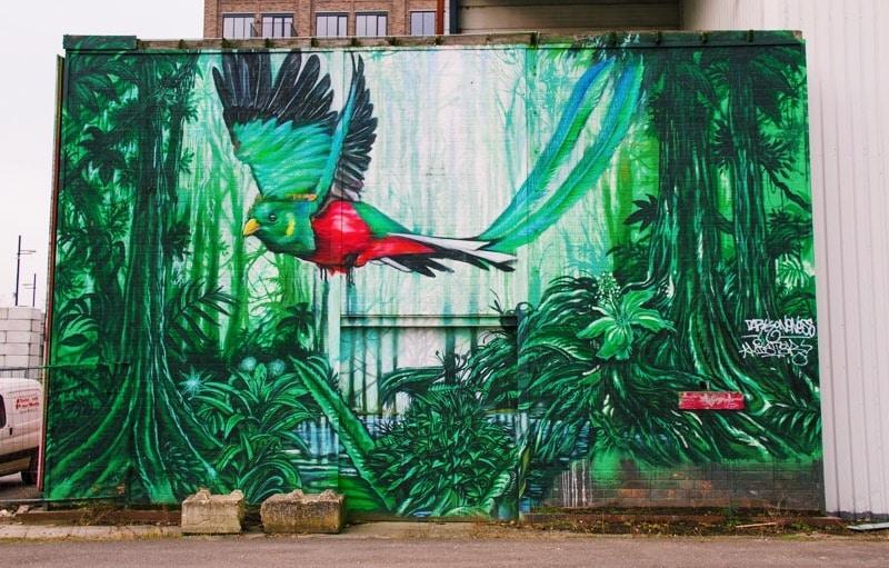 Street Art | Eindhoven in Nederland