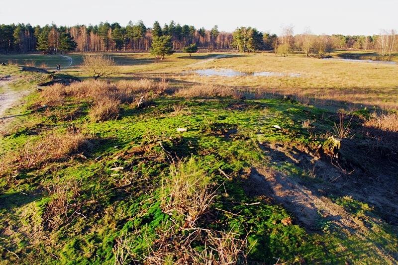 Wandelen In Het Natuurgebied De Leemputten Van Dorst Stripe Away