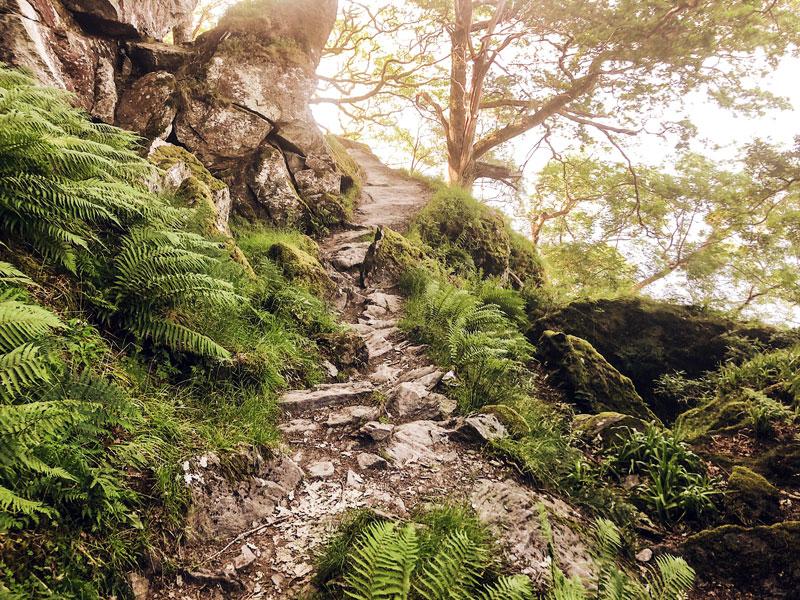 Wandelen langs de Loch Lomond