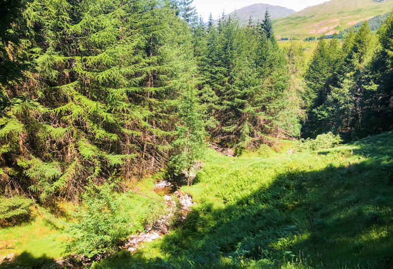 Wandelen van de West Highland Way, West Highland Way, West Highland Way schotland, hiken West Highland Way, hiken schotland, wandelen in schotland, hiken in schotland,