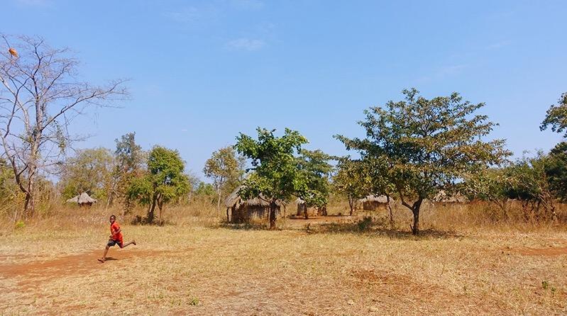 Zambia, als wat je moet weten over zambia, reizen door zambia, zambia afrika, south luangwa national park, victroria falls, reizen door afrika,