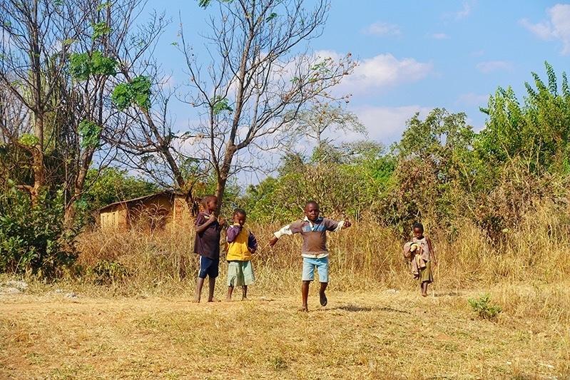 Reizen door Zambia: alles wat je moet weten