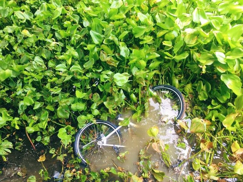 Story in the picture #8 | Fiets te water in Bangkok