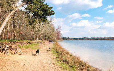 Wandelen in het Mastbos | de mooiste wandelroutes
