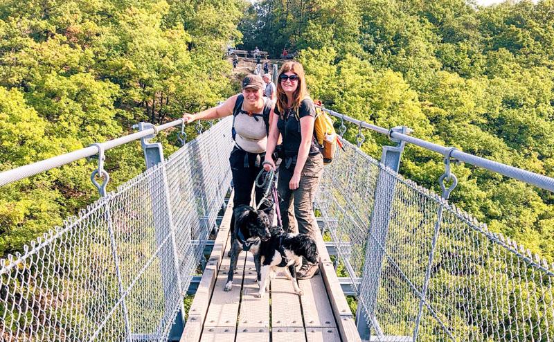 Geierlay Hangbrug met honden