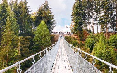 De Geierlay Hangbrug: de mooiste hangbrug van Duitsland