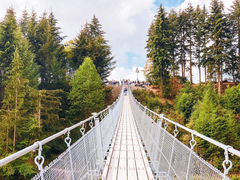 Geierlay Hangbrug bezoeken