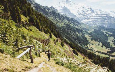 Wandelen van Männlichen naar Wengen over de Gemsenweg