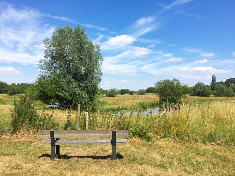 Bucket List Nederland: wat wil ik allemaal zien