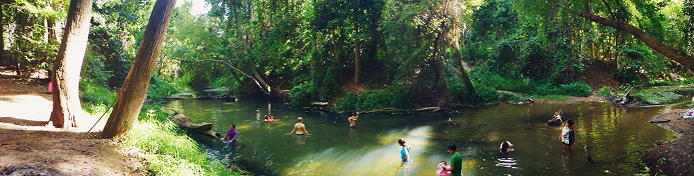 zwemmen in de jungle, khao yai national park, khao yai, national park, nationaal park, thailand, reizen door thailand, nationalen parken in thailand, zwemmen jungle