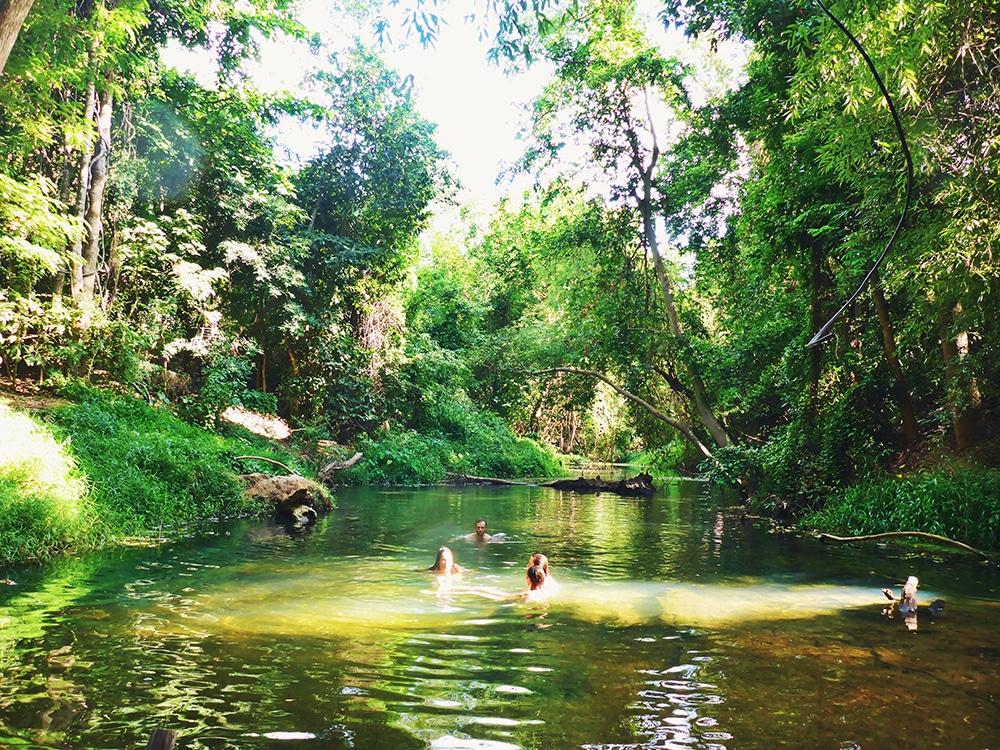 Zwemmen in Khao Yai National Park