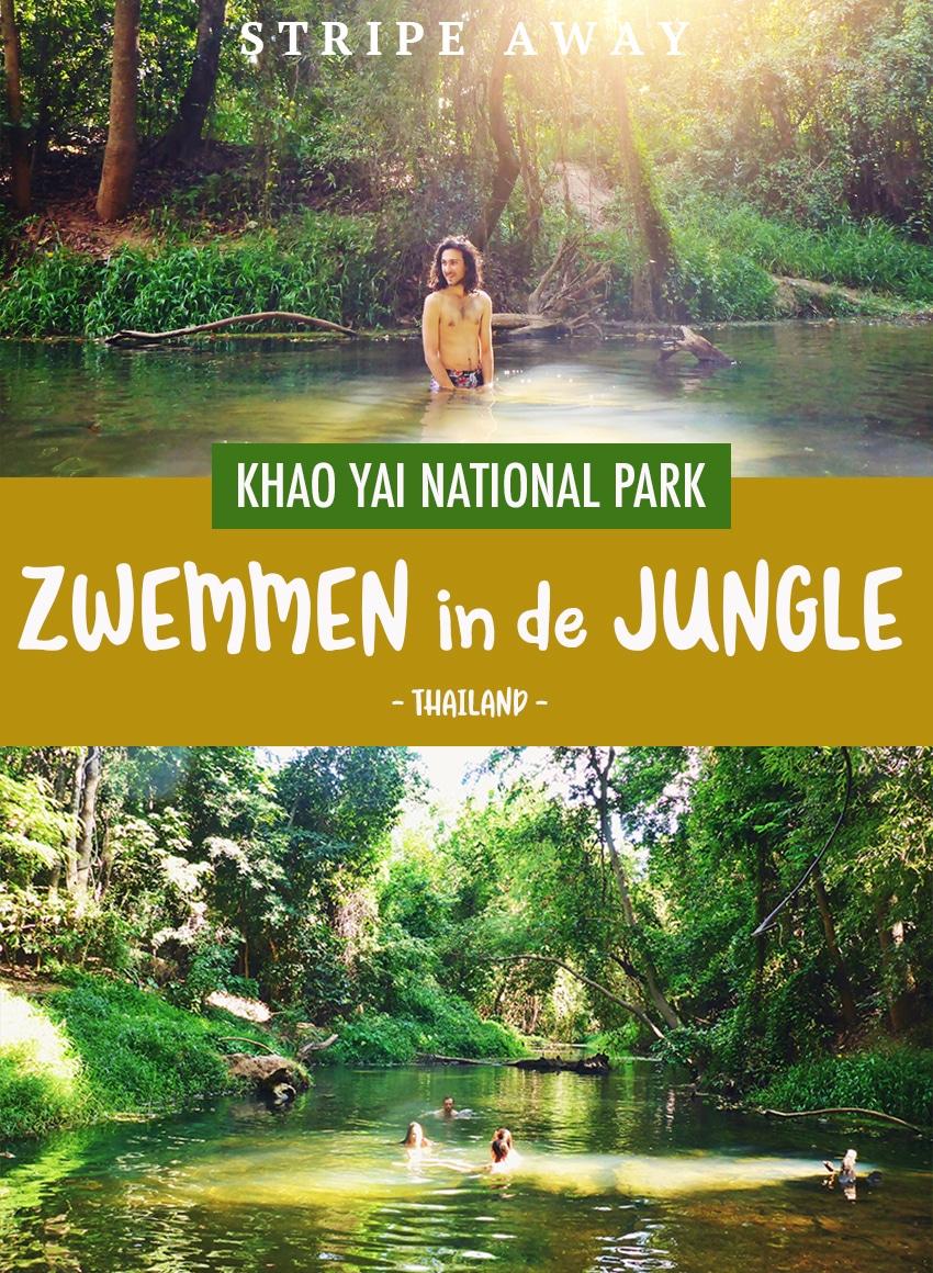 Pinterest zwemmen in de jungle van Khao Yai National park