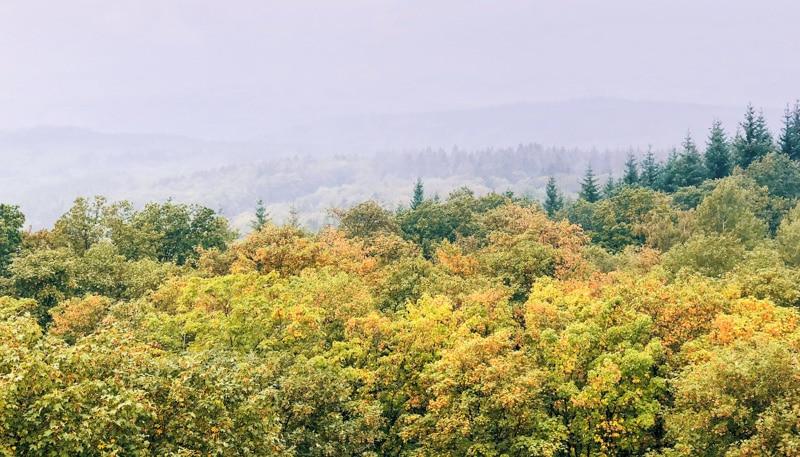 Keltenpfad wandeling Eifel