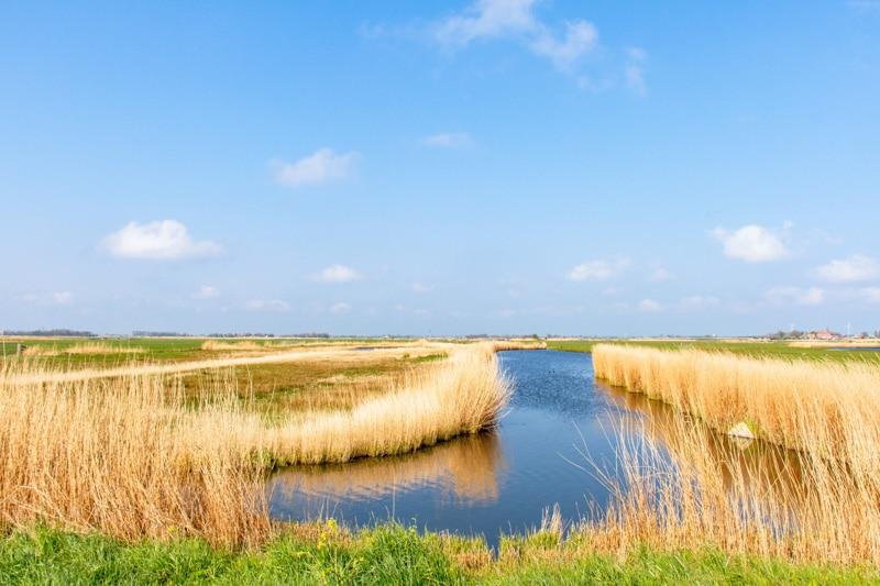 Doen en zien in Laag Holland