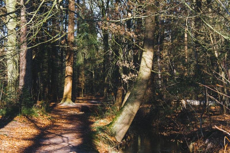 Landgoed Baest wandelen