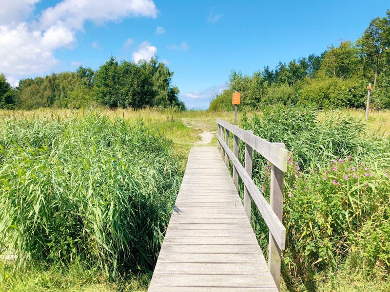 Wandelen Nationaal Park Lauwersmeer
