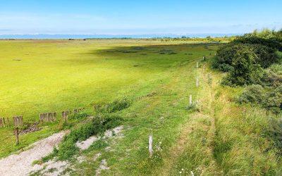Wandelen in Nationaal Park Lauwersmeer