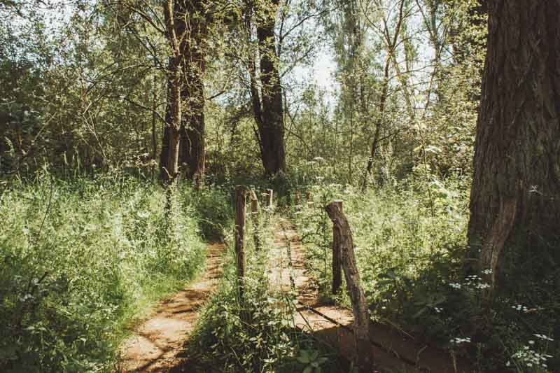 Natuurreservaat Lovenhoek