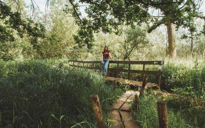 Wandelen in Natuurreservaat Lovenhoek in de Kempen